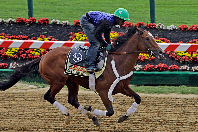 Preparing For The 2013 Preakness