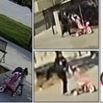 【洛縣警方正調查廁所遺棄嬰兒案 一名女性涉案】