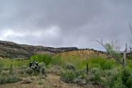 Obession propriétaire au milieu du désert