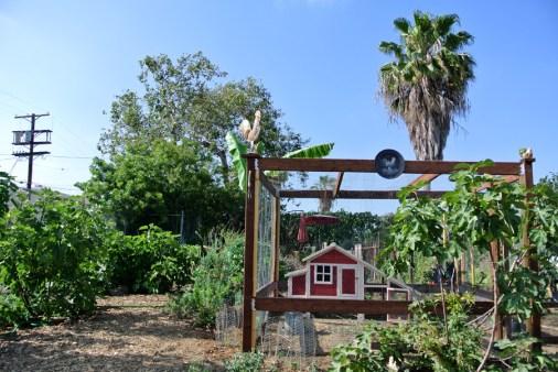 Jardin éducatif LA ecovillage