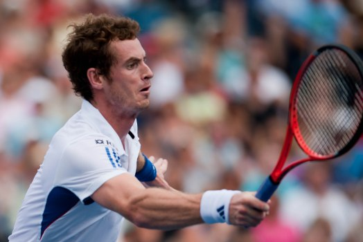 andy-murray-2016