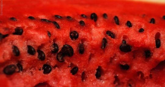 2015-04-03-watermelon-seeds-tea-2-fb-2