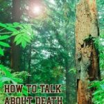 Cover of How to talk about death without dying by Rosalind Williamson