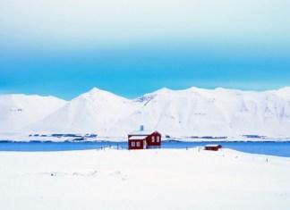 Eksport do Islandii - wszystko co musisz wiedzieć - ustka24.info