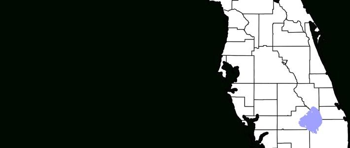 Datei:map Of Florida Highlighting Miami-Dade County.svg regarding Florida Map With Miami