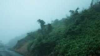 暴風雨の山道