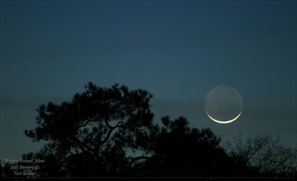 The 2% waxing crescent Moon at sunset, January 12, 2013. Credit and copyright, Tavi Greiner.