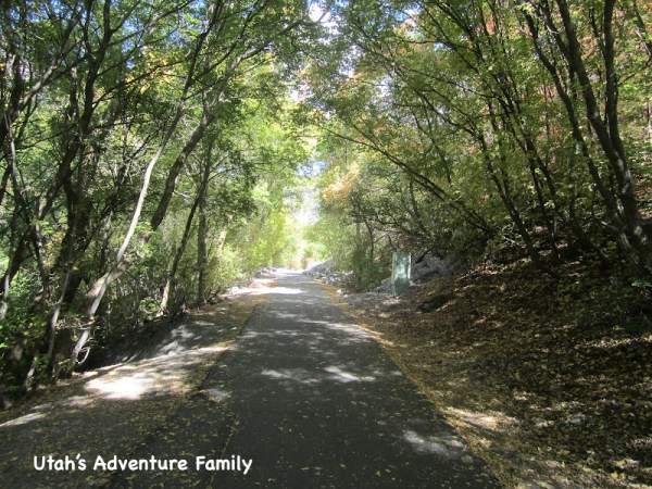 The trail is generally well shaded and beautiful.