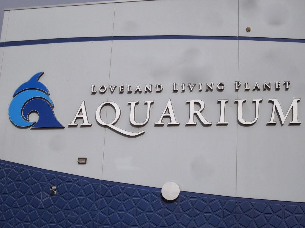 Loveland Living Planet Aquarium - Utah's Adventure Family