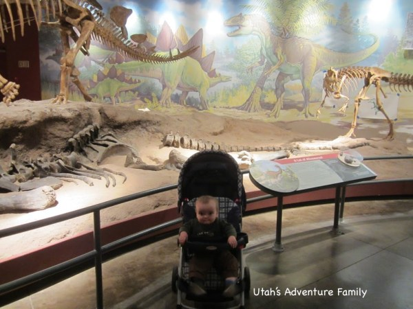 Even our youngest loved the museum fossils.