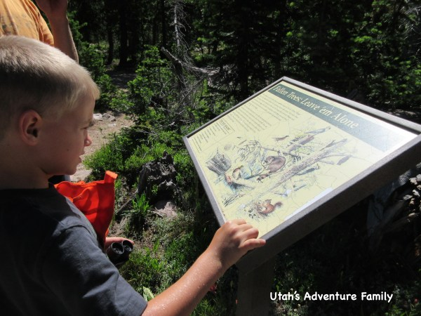 There are interpretive signs along the way.