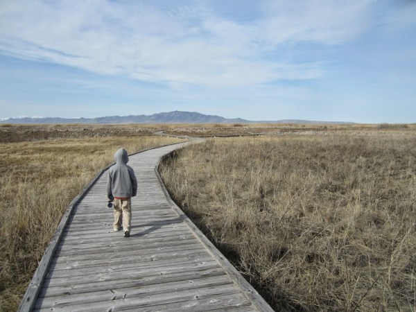 Great Salt Lake Shoreland Preserve