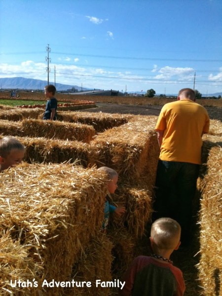 The corn maze was simple.