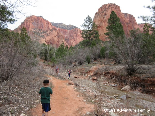 This Taylor Creek hike is in Kolob Canyon