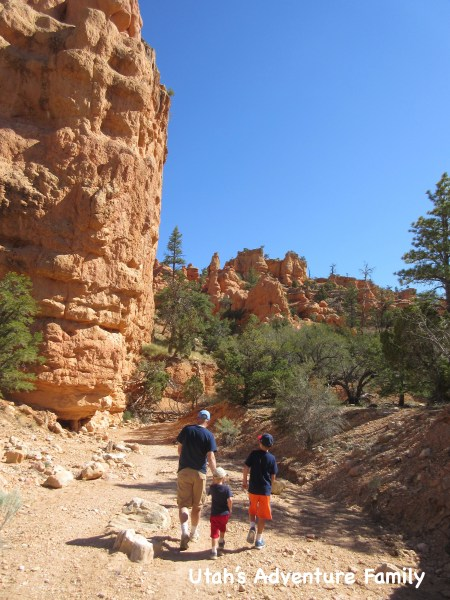 Red Canyon 17
