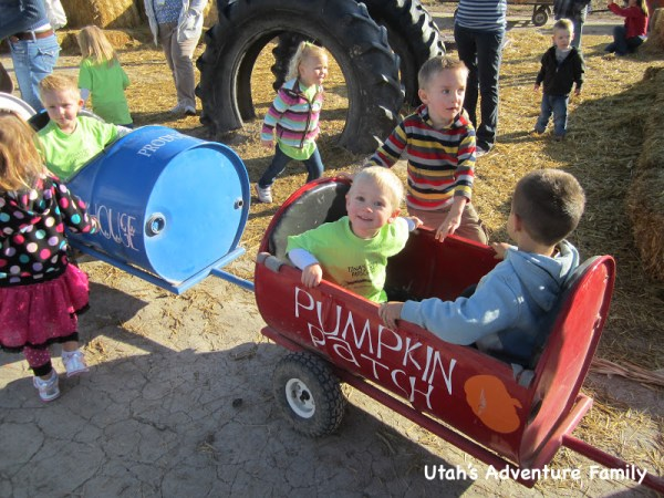 The tractor barrel ride is perfect for the young kids.