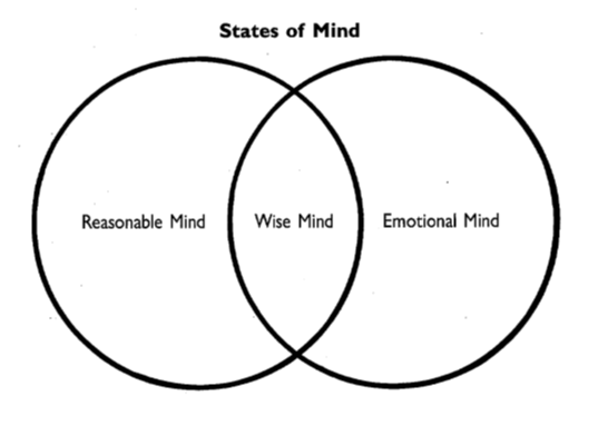 Managing difficult emotions wise mind
