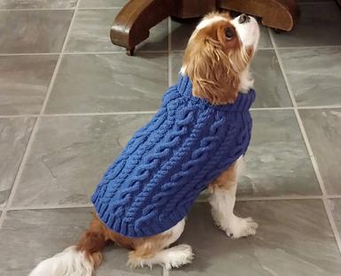 jack_s_sweater_medium2CROP