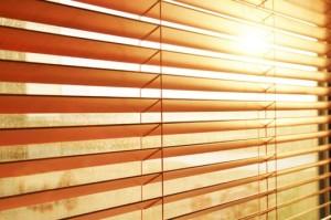 sunlight-office