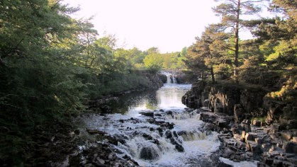 00010 OCTOBER LOW FORCE Canon june 2014 045 - Anne Scott