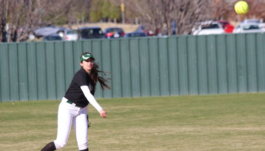 Softball looks to bounce back with new coach