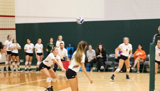 Volleyball, soccer gain winning streaks