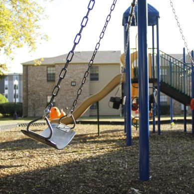 Online Student Petition for Campus Swings Receives over 600 signatures