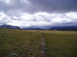 Lättvandrade hedar norr om Vakkotavare