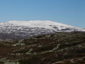 Norska snötäckta fjäll