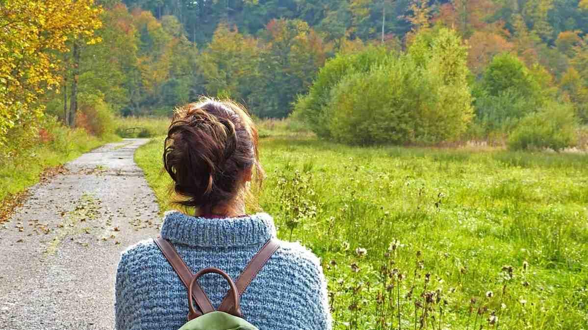 Nybörjarens guide till skogsbad