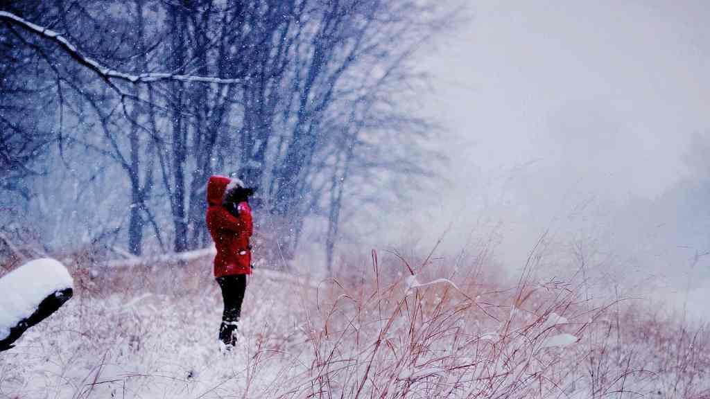 Skogsbad på vintern kan vara fantastiskt om du är rätt förberedd.