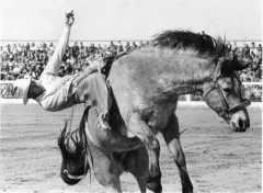 Rodeo History 3