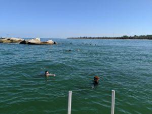 Honors students snorkeling at Egmont Key