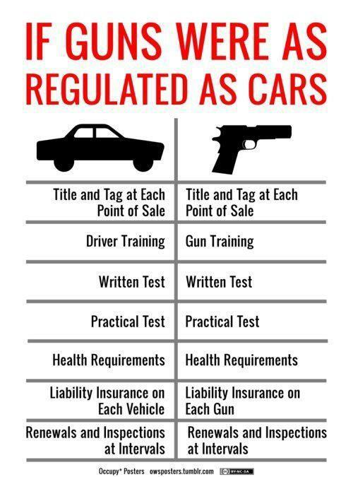 guns8 training and regulations