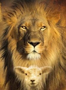 Lamb Into Lions
