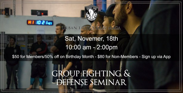 November 18th Group Fighting Seminar