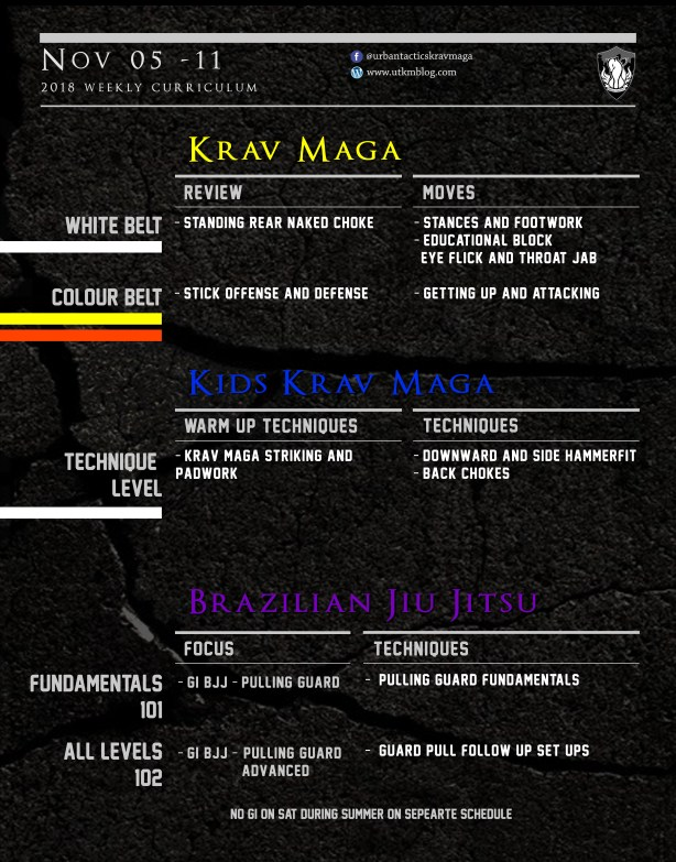 This week's Krav Maga and BJJ curriculum: Nov 5th-11th