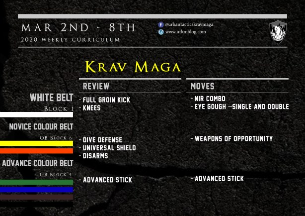 This week's Krav Maga curriculum: Mar 2nd - Mar 1st - 8th