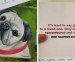 dog painting heartfelt buzz
