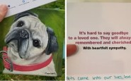 dog painting heartfelt buzz