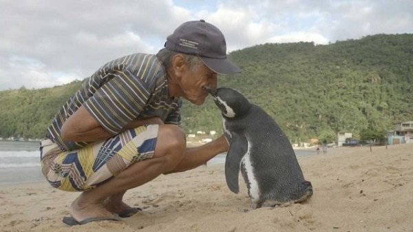 Penguin reunites with Joao Pereira de Souza