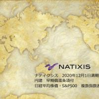 ナティクシス 仕組債 アイキャッチ