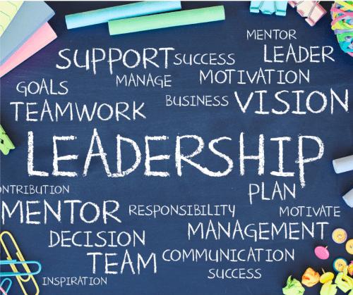 identifying leadership qualities coaching development