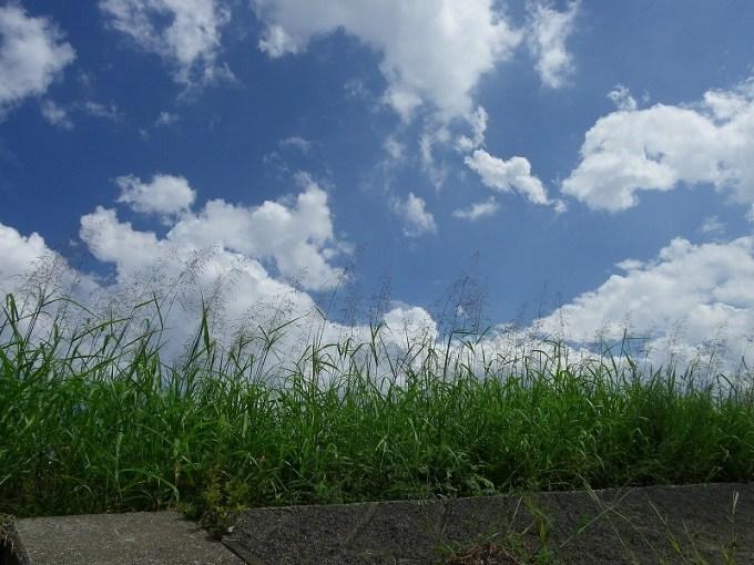 穏やかな空