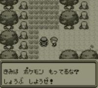 pokemon-green5-009