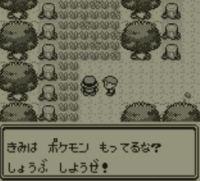 pokemon-green5-009
