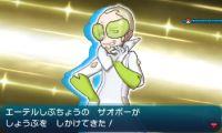pokemon-sm9-029