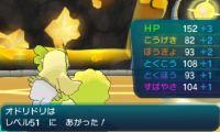 pokemon-sm11-043