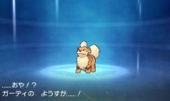 pokemon-sm15