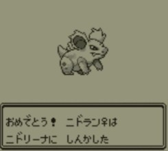 pokemon-green11-017